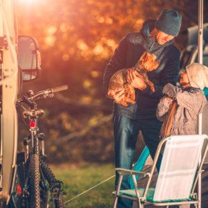 Hundegeruch aus Campingwagen entfernen